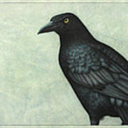 Grackle Poster by James W Johnson
