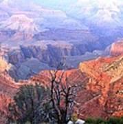 Grand Canyon 67 Poster