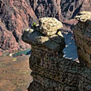 Grand Canyon.  Az Poster