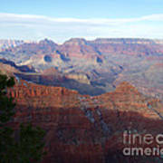 Grand Canyon Beauty Poster by Janice Sakry