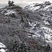 Grandfather Mountain's Linville Peak  Poster