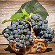 Grapes And Leaves In Basket Poster by Len Romanick