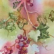 Grapevine Poster