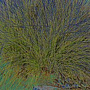 Grass Effects-2 Poster