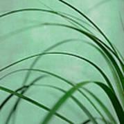 Grass Impression Poster