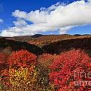 Graveyard Fields In The Mountains Poster