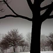 Gray Skies At Night Poster