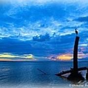 Great Blue Heron Sunrise Poster