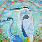 Great Blue Herons Seek Freedom Poster