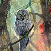 Great Grey Owl In Abstract Poster by Paul Krapf