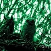Great Horned Owl And Owlet Poster