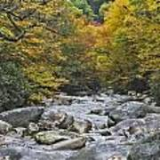 Great Smoky Mountains Creek 4 Poster
