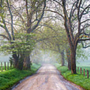 Great Smoky Mountains National Park Cades Cove Country Road Poster by Dave Allen