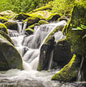 Great Smoky Mountains Tn Roaring Fork Motor Nature Trail Waterfall Poster