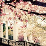 Grecian Spring Poster