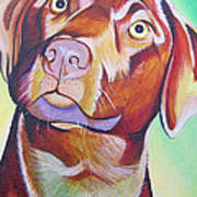 Green And Brown Dog Poster