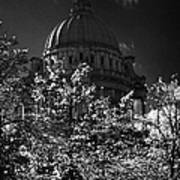 Green Copper Dome Of Belfast City Hall With Blue Cloudy Sky Behind Trees With Autumn Leaves Vertical Poster