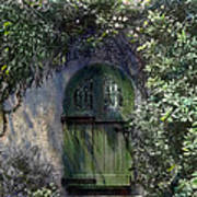 Green Door Poster by Terry Reynoldson