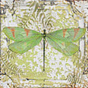 Green Dragonfly On Vintage Tin Poster