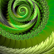 Green Fronds Poster