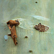 Green Outer Bark Poster