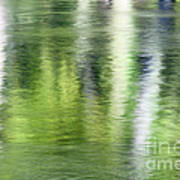 Green River Reflections Poster