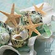Green Shells And Sea Glass Poster