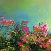 Green Sky With Pink Bougainvillea - Square Poster