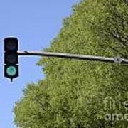 Green Traffic Light By Trees Poster