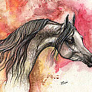Grey Arabian Horse On Red Background 2013 11 17  Poster