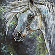 Grey Pony With Long Mane Oil Painting Poster