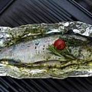 Grilled Trout On Barbecue Poster