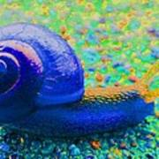 Groovy Snail Poster