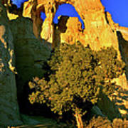 Grosvenor Arch At Sunset Poster