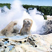 Grotto Geyser Yellowstone Np Poster