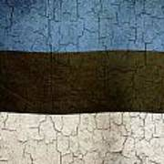 Grunge Estonia Flag Poster