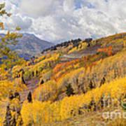 Guardsman Pass Aspen - Big Cottonwood Canyon - Utah Poster