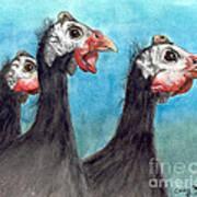 Guinea Hen Rooster Trio Farm Ranch Animal Art Poster