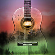Guitar Nature  Poster
