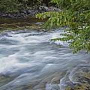 Gull River Rapids Poster