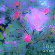 Gypsy Rose - Flora - Garden Poster