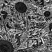 H2 Sunflowers Map Bw Poster