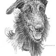 Hairy Handsome Dog Pencil Portrait Poster