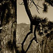 Sierra Nevada Sepia Poster
