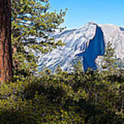 Half  Dome From Sentinel Dome Trail In Yosemite Np-ca Poster