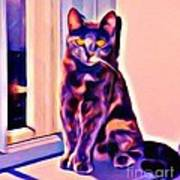 Halifax Cat Poster