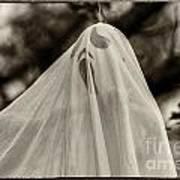 Halloween Goast Sepia Poster