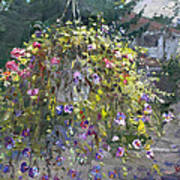 Hanging Flowers From Balcony Poster