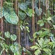 Hanging Gardens V5 Poster