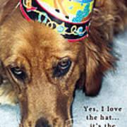 Happy Birthday Buddy  Poster